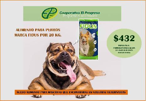 <h3><a href='http://caelprogreso.com.ar/novedades/#113' title='# Alimentos Pequeños Animales // Buen Precio, Excelente calidad'># Alimentos Pequeños Animales // Buen Precio, Excelente calidad</a></h3><span>...</span>